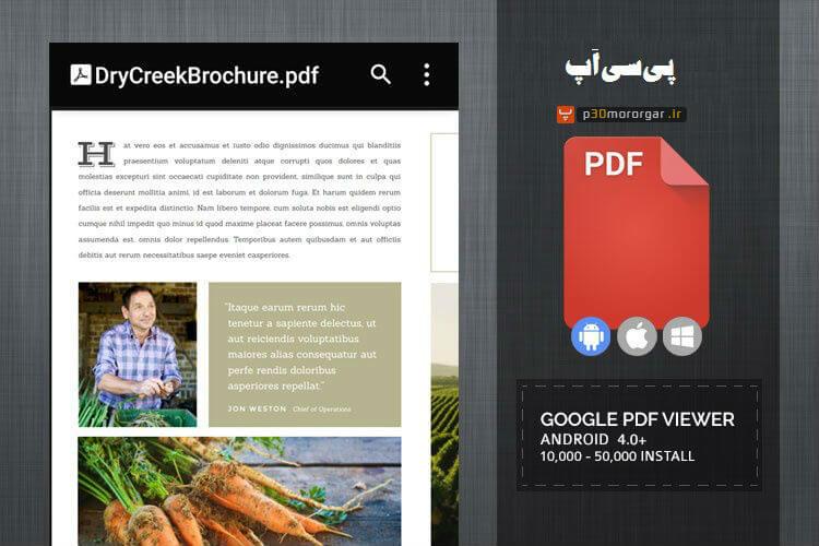 Google-PDF-Viewe1r