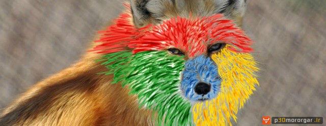 fox-chrome