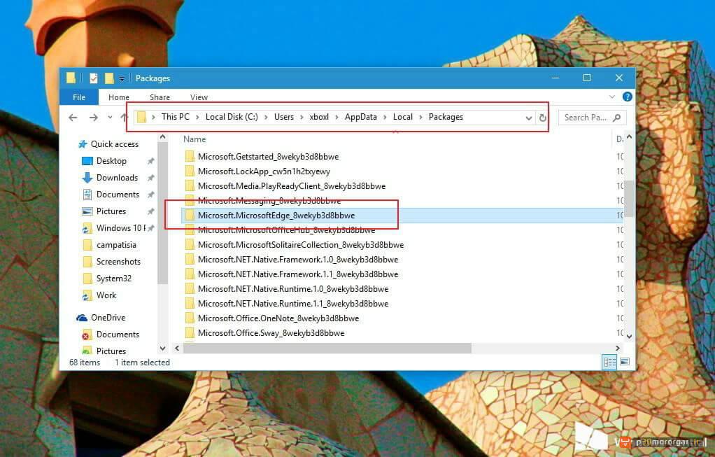microsoft-edge-package-folder